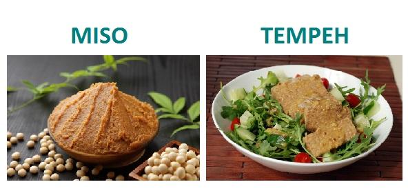 lista-alimentos-probioticos-miso-tempeh