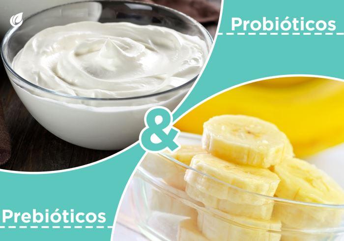Usos y beneficios de los próbioticos y los prebióticos