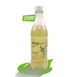 9 Prokey/Kombucha, choose flavour (9x500ml)