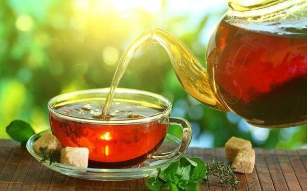 Tipos de té y cómo preparar la kombucha con ellos