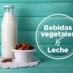 Bebidas Vegetales VS. Leche y 3 Recetas para Prepararlas en Casa