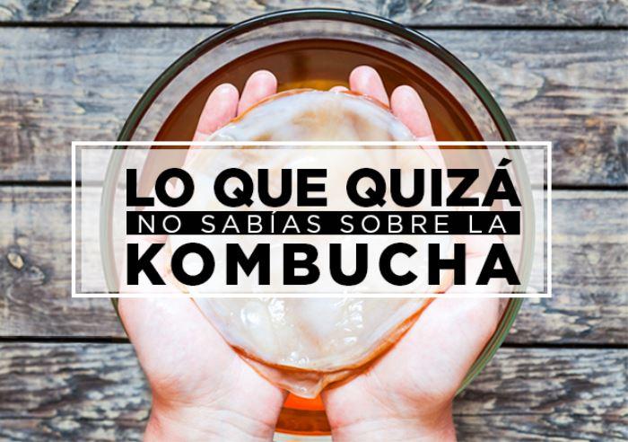 Curiosidades de la Kombucha. Lo que quizá No Sabías… (Parte I)