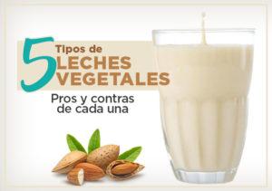 tipos de leches vegetales