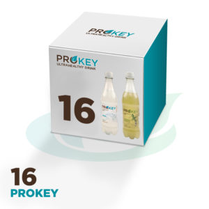 16 Prokey/Kombucha, choose flavour (16x500ml)