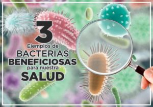 Bacterias beneficiosas prokeydrinks