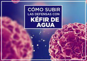 Subir defensas con Kefir de Agua