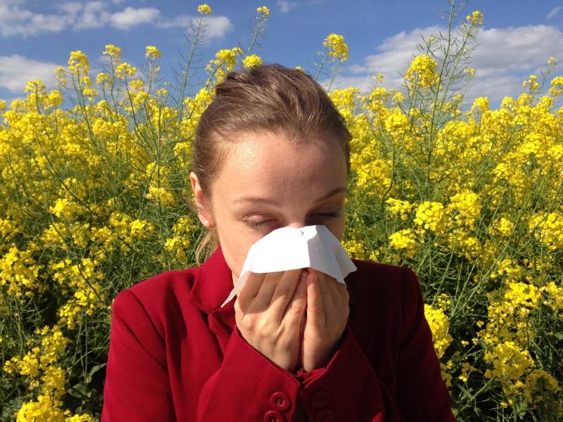 Cómo ayudan los probióticos con las alergias