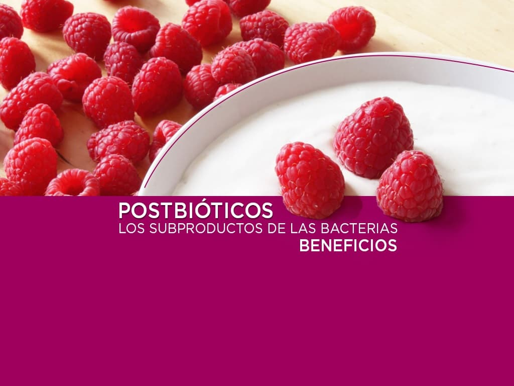 Beneficios de los postbióticos, los subproductos de las bacterias.