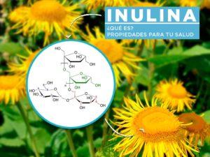 Propiedades de la inulina