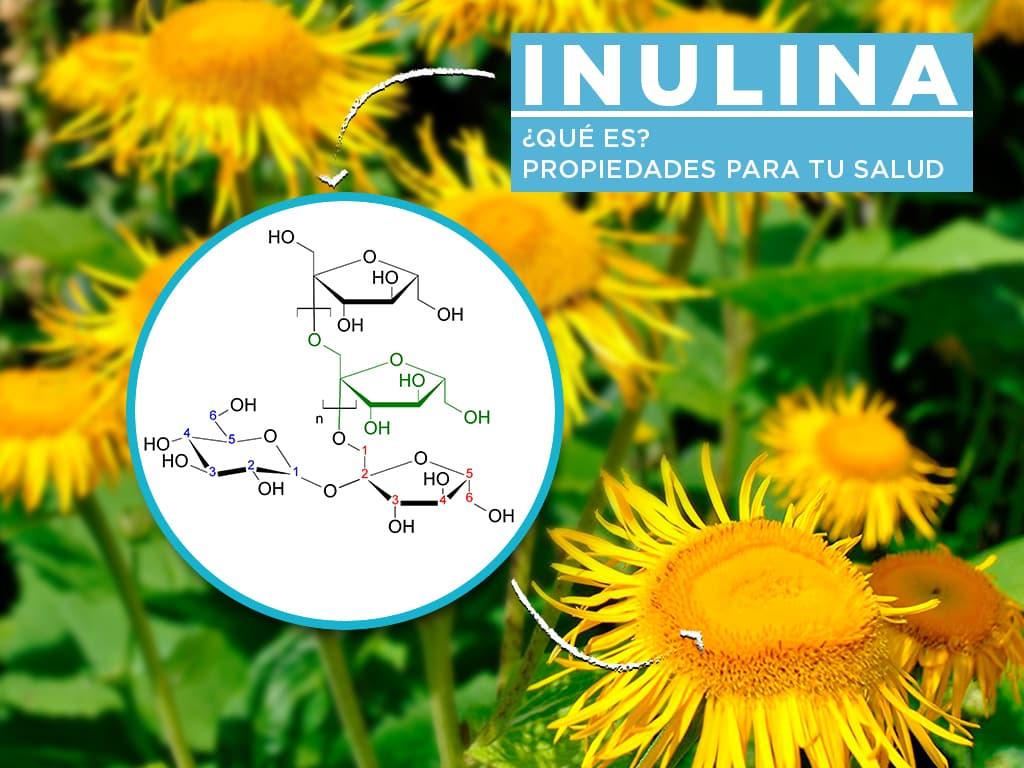 Inulina: ¿qué es y qué Propiedades tiene para tu salud?
