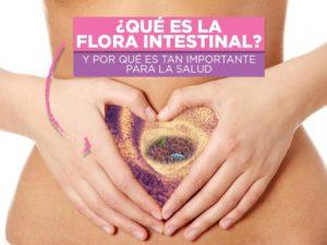 qué es la flora intestinal