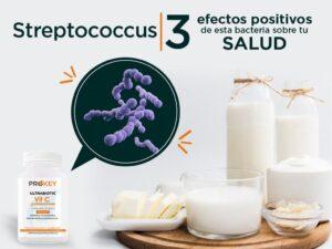 Beneficios de la bacteria Streptococcus