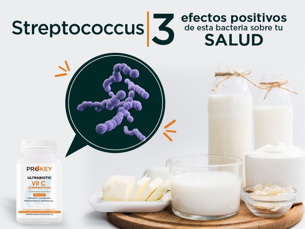 Streptococcus: 3 Efectos Positivos de esta Bacteria sobre tu Salud