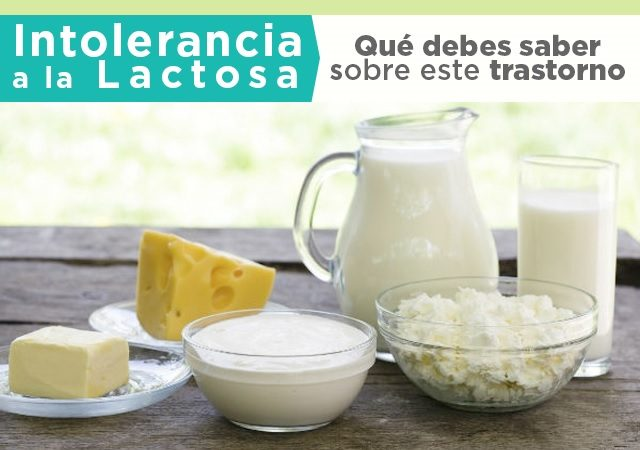 Intolerancia a la lactosa Prokeydrinks